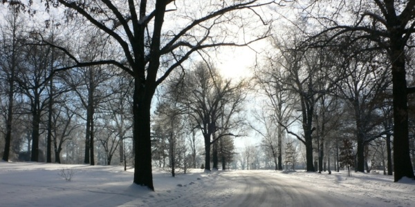 Image of a snowy park road