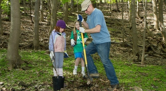 Dad planting tree with kids