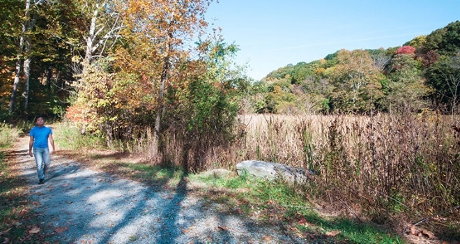 Image of a person walking along a trail near the Highland Park seasonal pools