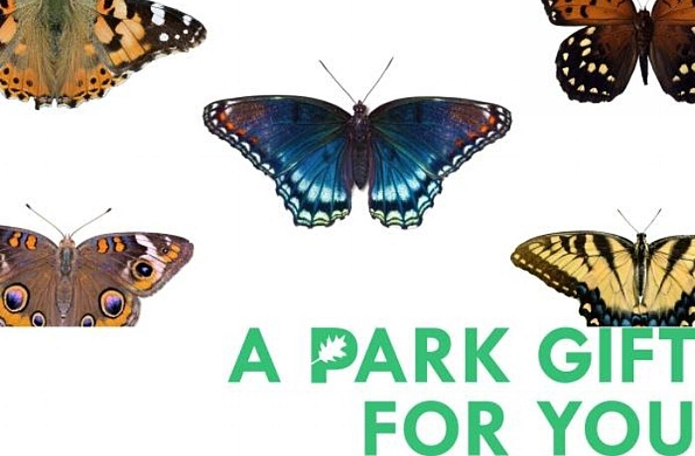 "Image of butterflies and ""A Park Gift for You"""