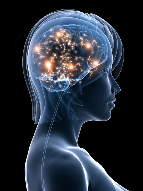 neuroplasticity coaching