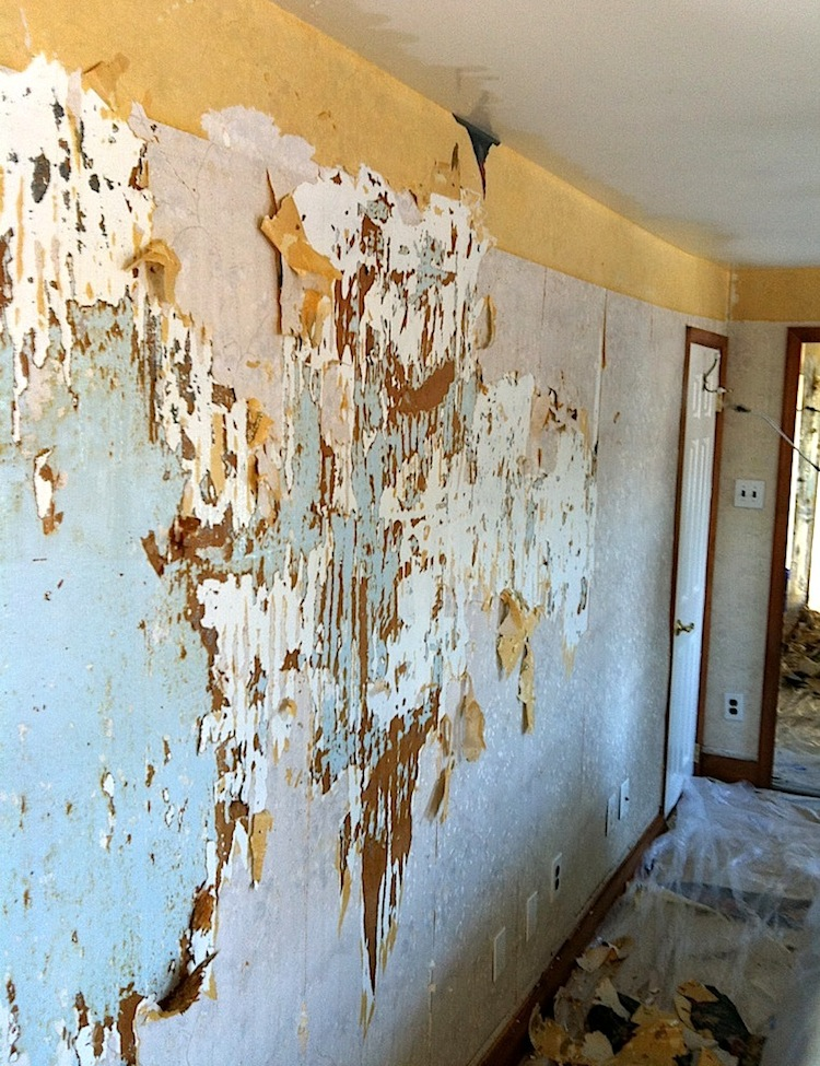 Wallpaper removal jacksonville fl for How hard is it to remove wallpaper