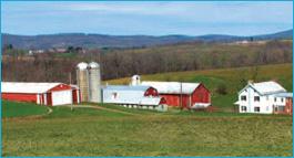 middletown-farm