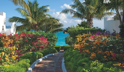 Belmond Cap Juluca Gardens Palm Trees, Flowers and Path to the Beach