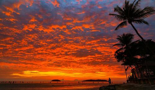 Kota Kinabalu Orange Sunset on beach with palm trees