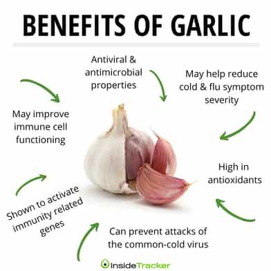 Garlic immunity