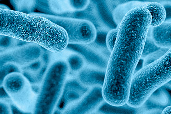 Reported Legionnaires' Cases on The Rise