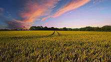 Are You a 'Lifeline Lender' For a Rural Area?