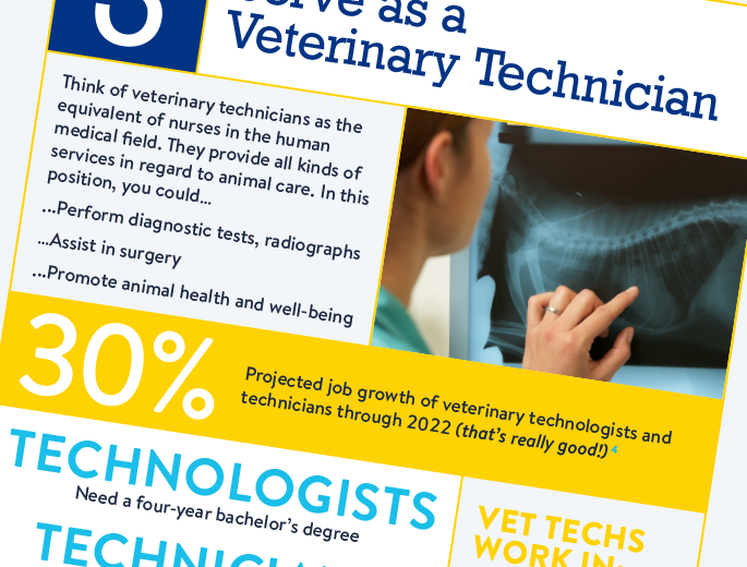 bachelor of science in veterinary science | becker college, Human Body