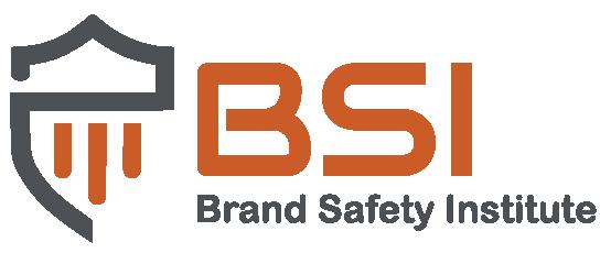 BSI_Logo2-01-01