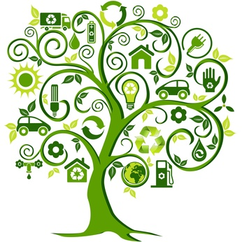 going-green-tree-wellness-sustainability.jpg