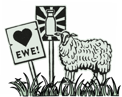 sheep and signs_600%