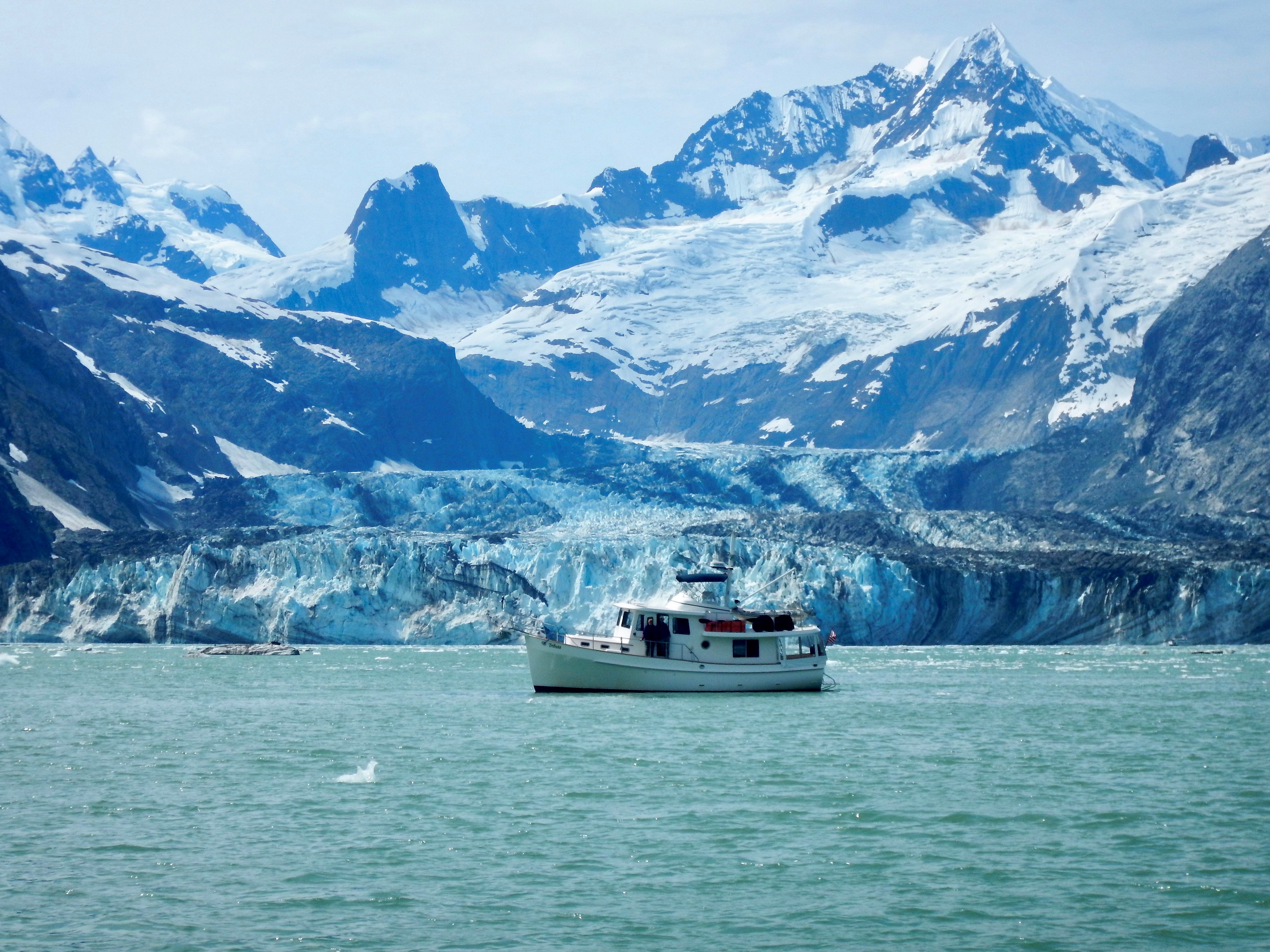 John Hopkins Inlet, Glacier Bay National Park.jpg