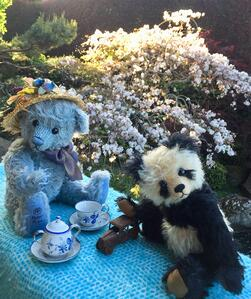 Spring Teddy Bear  and Panda party