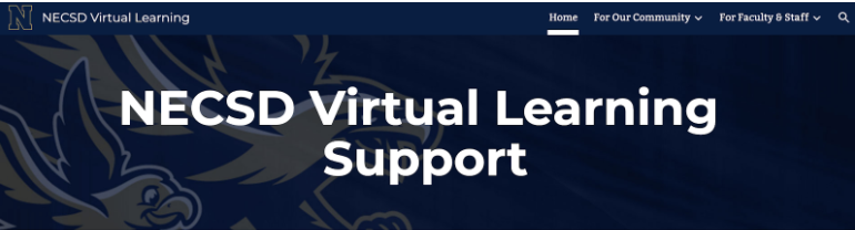 NECSD Virtual Learning Support | NY NL