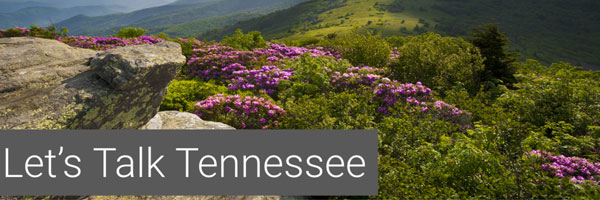 Tennessee-Newsletter-header