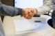 Rakennushankkeen kilpailutuksen voittaminen lähtee asiakaspalvelusta