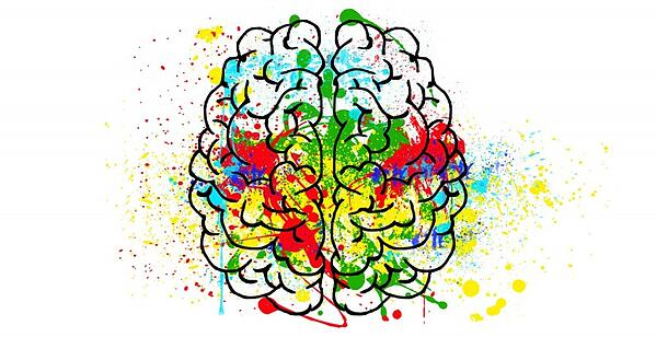 brain-2062048_1920-768x395