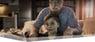 Grossvater mit männlichem Enkelkind schaut digitales TV