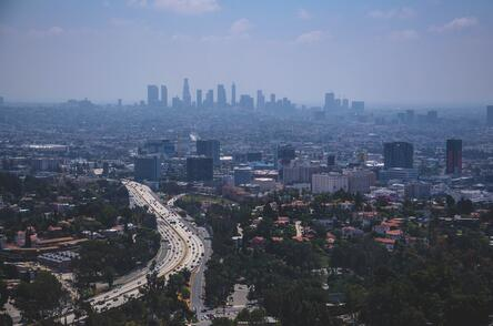 Los Angeles Culver City Cannabis Business Updates