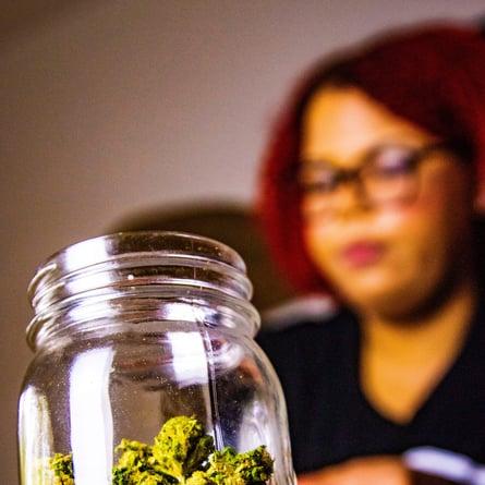 cannabis-education