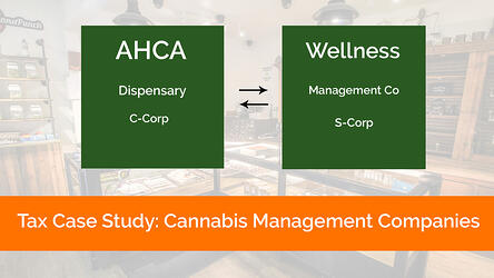 cannabis management companies tax case study