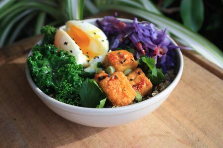 Are fad diets healthy?
