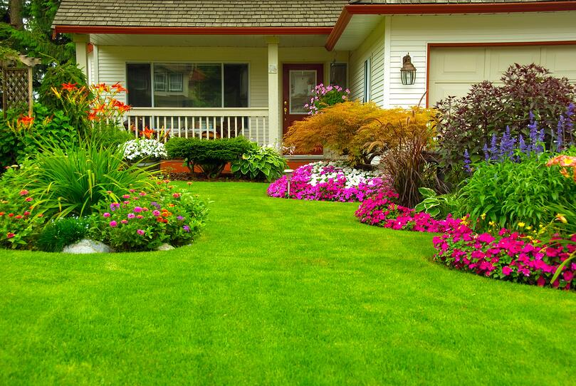 Simple Summer Landscaping Tips for Your Home