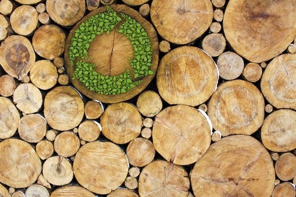 """Dalla """"green"""" alla """"circular"""" economy: la sfida del collegato ambientale (terzo estratto)"""