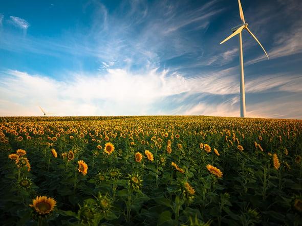 5 candeline per Anter a sostegno delle rinnovabili in Italia