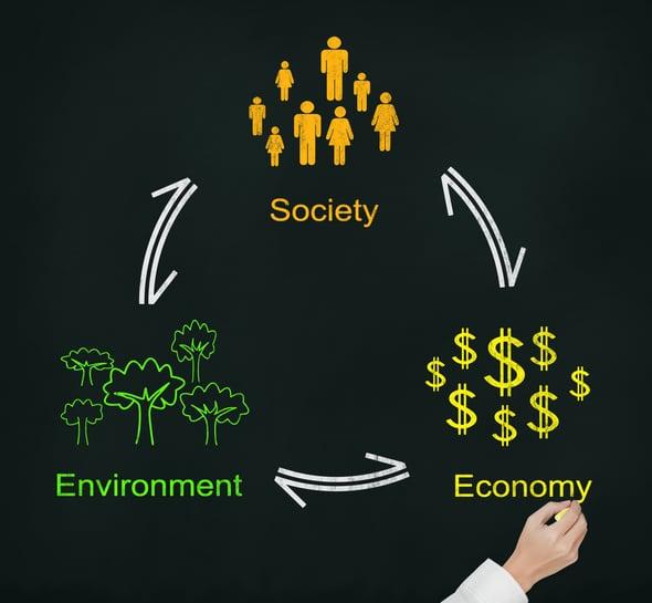 Sostenibilità: sette regole per le imprese green