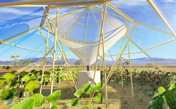 Roots Up è il progetto vincitore del Best Climate Practices 2015