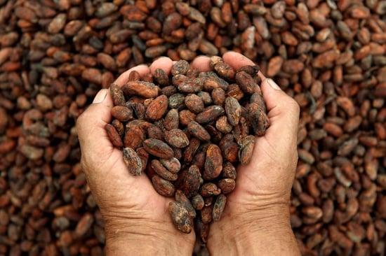 A Expo 2015 la Costa d'Avorio coniuga cacao e sostenibilità