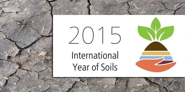 Benvenuti nel 2015, l'anno internazionale della risorsa-suolo