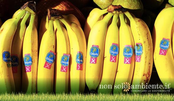 Chiquita: l'impegno dietro al bollino blu per una filiera sostenibile
