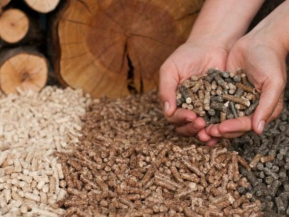 Dalle biomasse un quinto dell'energia rinnovabile entro il 2030