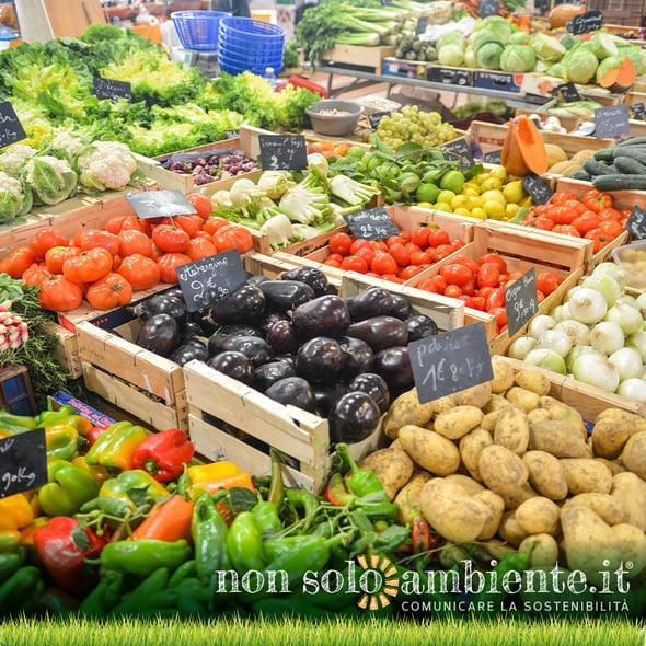 Biodiversità e alimentazione: a rischio il sistema di produzione mondiale.
