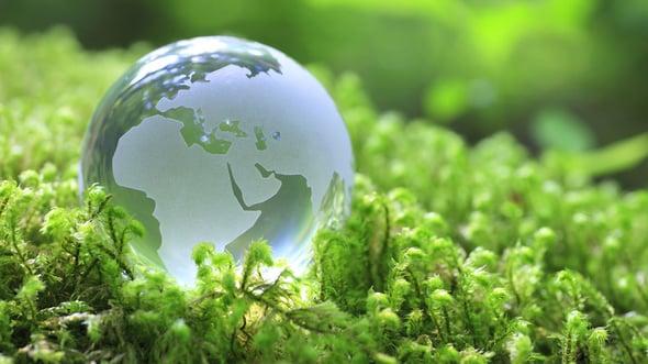 Gli Stati Generali e la green economy in Italia