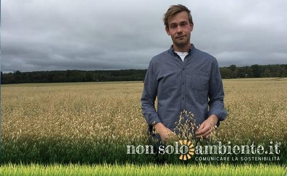 Oatly: l'agricoltore che produce latte con avena