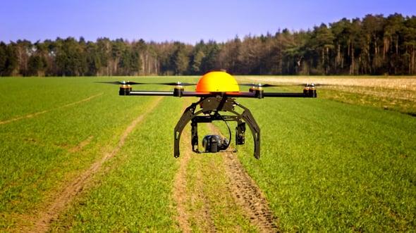 Droni: la nuova frontiera della riforestazione.