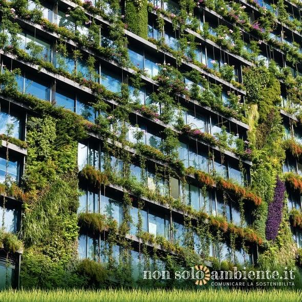 Quanto valgono gli alberi in città?