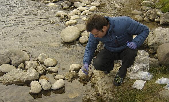 Organismi sentinella per monitorare l'inquinamento da antibiotici e metalli pesanti