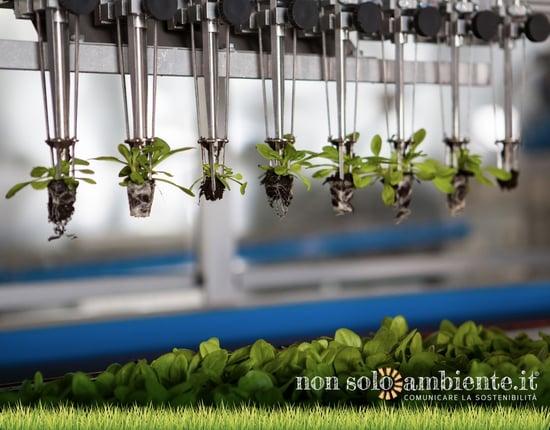 Agricoltura 4.0: innovazione e sostenibilità nei campi