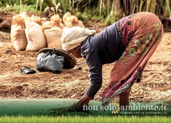 Un piano da 53 milioni di dollari per combattere la crisi alimentare in Madagascar