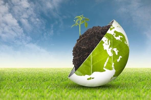 Le bioenergie diventano il traino del settore forestale