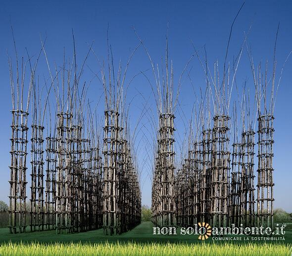 La Cattedrale vegetale di Giuliano Mauri a Lodi