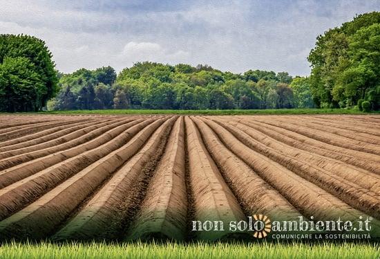 Filiera Italia: agricoltura e industria alimentare