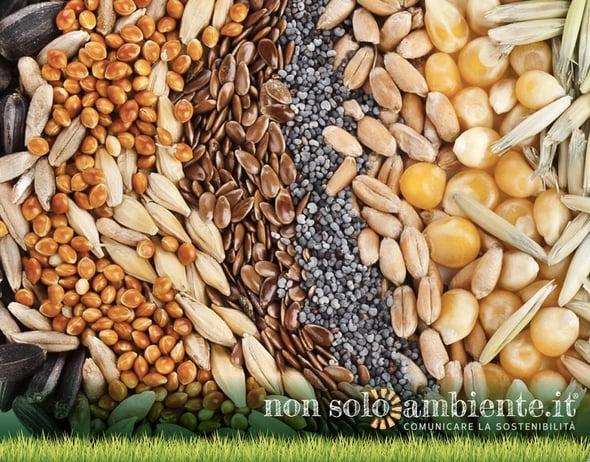 8° Forum Internazionale su Alimentazione e Nutrizione