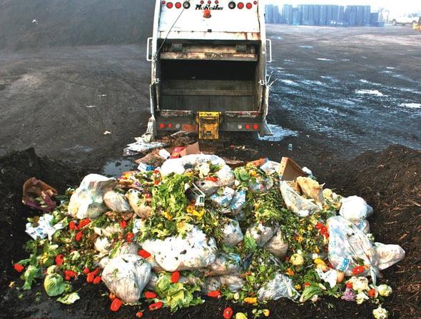 Dalla terra alla tavola, identikit in sei fasi dello spreco alimentare