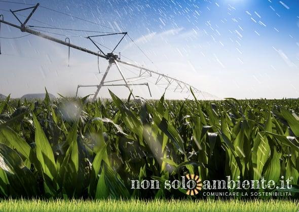 Scienza e Monsanto, attendiamo la verità sul glifosato